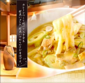 Creamy currey udon